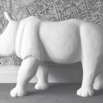 Blank Rhino